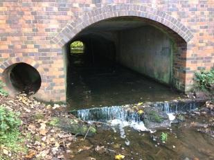 6. Culvert under canal